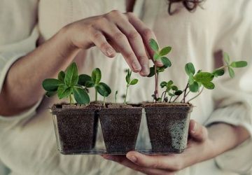 Entreprendre durablement Differencias360